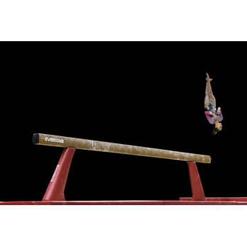 FIG Approved Competition Beam Ref 3610 &  3611